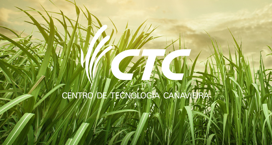 lead_ctc